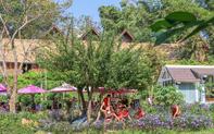 Phát triển mô hình điểm về du lịch cộng đồng tại thành phố Buôn Ma Thuột