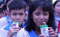 Hơn 33.000 học sinh miền núi Quảng Nam vui mừng được uống sữa tại trường