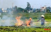 Nông dân lại đốt rơm rạ, khói bụi đang bủa vây ngoại thành Hà Nội