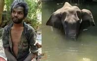 Sự thật bức ảnh người đàn ông bị nghi là thủ phạm cho voi mẹ ăn trái dứa có thuốc nổ và chết tức tưởi cùng đứa con trong bụng