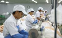 Thí điểm ký quỹ đối với người lao động đi làm việc tại Hàn Quốc có hiệu lực từ ngày 15/5/2020