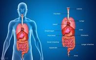 """Bất thường xuất hiện trên cơ thể cho thấy các cơ quan nội tạng quá """"bẩn"""""""