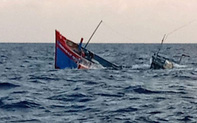Tàu cá nghi bị tàu hàng đâm chìm trên biển