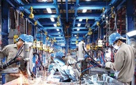 Cú hích lớn từ chính sách: Nghị quyết của Chính phủ về các giải pháp thúc đẩy phát triển công nghiệp hỗ trợ