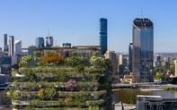 """""""Khu rừng thẳng đứng"""" hơn 21.000 cây xanh nổi bật giữa các tòa nhà chọc trời"""