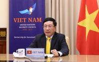 Phó Thủ tướng Phạm Bình Minh dự phiên họp trực tuyến Hội đồng Bảo an Liên hợp quốc