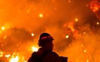 Bão, cháy rừng và Covid-19: Một năm thảm hoạ đối với nước Mỹ