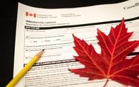 Harvey Law Group cảnh báo những hình thức lừa đảo chương trình Thị thực Khởi nghiệp Canada