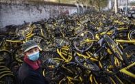 """Người TQ sợ hãi vì lời cầu cứu vang lên từ """"nghĩa địa"""" của """"xe đạp biết nói"""""""