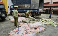 Tịch thu hàng tấn chả cá, sủi cảo không rõ nguồn gốc