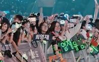 """Fan Việt """"nở mũi"""" tự hào khi xuất hiện to bự trên video kỷ niệm 7 năm debut của những """"chàng rể Việt Nam"""" GOT7"""