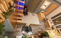 Căn phòng 12,5m² của bé trai 5 tuổi khiến người lớn nhìn cũng thích mê ở Hải Phòng
