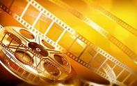 Tổ chức chiếu phim Pháp tại Việt Nam