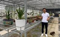 """Ông chủ vườn lan Sỹ Trần: """"Con nhà nòi"""" và hành trình gây dựng 2 vườn lan ở Thái Bình, Hải Dương"""