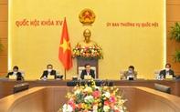 Chủ tịch Quốc hội: Rút ngắn tối đa thời gian làm việc kỳ họp thứ Hai để tập trung cho phòng, chống dịch bệnh và phục hồi kinh tế - xã hội