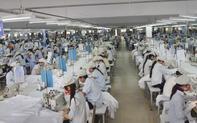 9 tháng, Trung tâm DVVL Đồng Nai trợ cấp thất nghiệp cho gần 34.000 lao động với số tiền hơn 895 tỷ đồng