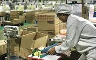 Khẩn trương giải quyết chính sách bảo hiểm thất nghiệp, giúp người lao động giải tỏa áp lực cuộc sống