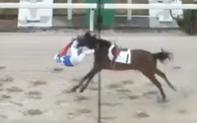 """Về đích theo phong cách """"người bay trước ngựa theo sau"""", tay đua 62 tuổi khiến người xem tim đập chân run"""