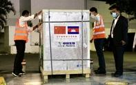 Trung Quốc thúc đẩy vai trò vaccine Covid-19 toàn cầu
