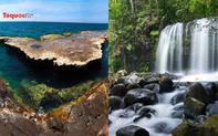 Khu dự trữ sinh quyển thế giới của Việt Nam có gì đặc biệt?