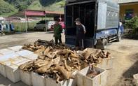 Phát hiện và tiêu hủy 1 tấn sản phẩm động vật bốc mùi hôi thối