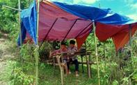 Học sinh ở bản biên giới leo đỉnh núi, dựng lán hứng sóng để học trực tuyến
