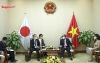 Bộ trưởng Bộ VHTTDL tiếp Đại sứ Nhật Bản và Đại sứ Tây Ban Nha tại Việt Nam