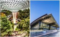 Top 10 sân bay sang chảnh bậc nhất thế giới: Singapore đẹp như khu nghỉ dưỡng - trị giá 1,7 tỷ USD cũng chỉ hạng 3, quốc gia TOP 1 là cái tên không ngờ
