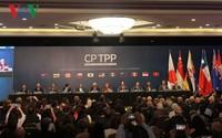 Hôm nay, CPTPP chính thức có hiệu lực với Việt Nam