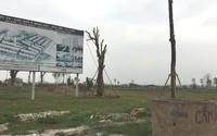 Thủ tướng yêu cầu Hà Nội kiểm tra loạt dự án 2.000ha bỏ hoang ở Mê Linh