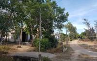 Dự án chưa hoàn thiện hạ tầng, đất nền đã được rao bán