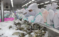 Hàng Việt Nam xuất khẩu vào thị trường Mỹ tăng mạnh những tháng cuối năm