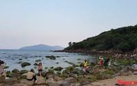 """Dự án khu du lịch sinh thái Nam Ô: Sẽ có """"Du lịch trải nghiệm bình minh trên vịnh Nam Ô bằng thuyền thúng"""""""
