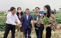 Chủ tịch huyện Mê Linh (Hà Nội): Không có chuyện nông sản thừa hay cần giải cứu