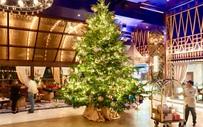 Trưng bày cây thông Noel đắt nhất thế giới trị giá gần 350 tỷ mừng Giáng sinh