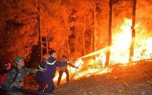 """Cháy rừng liên tiếp: Cần phải """"dập"""" những ngọn lửa được khởi phát từ sự bất cẩn, thiếu ý thức của con người"""