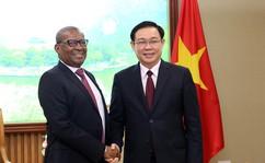 Phó Thủ tướng Vương Đình Huệ tiếp Đại sứ các nước Nam Phi, Nigeria