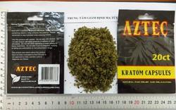 Số lượng chất ma túy hiện nay được quản lý là 515 chất