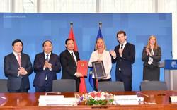 Việt Nam - EU cùng hợp tác giải quyết khai thác gỗ bất hợp pháp