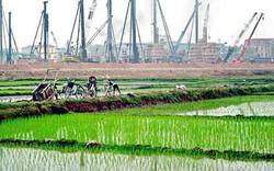 Bắc Giang: Quyết định chuyển mục đích sử dụng 37 ha đất trồng lúa sang đất phi nông nghiệp