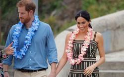 Công nương Meghan Markle đang nổi tiếng hơn cả Hoàng tử Harry