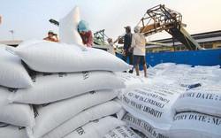 Xuất khẩu gạo vững bước nhờ giá liên tục tăng