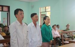 Vụ phá rừng Quảng Nam: Ba người bị kết án