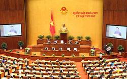 """Việt Nam chính thức thông qua """"hiệp định thế kỷ"""""""