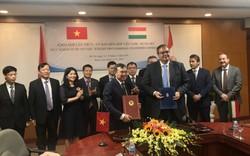Việt Nam-Hungary: Quan hệ hợp tác văn hóa phát triển mạnh mẽ