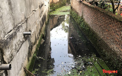 Hà Đông (Hà Nội): Rãnh nước thải ô nhiễm phường Yên Nghĩa được xử lý sau phản ánh của Báo điện tử Tổ Quốc