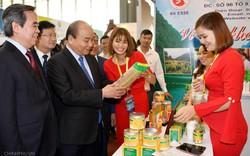 Thủ tướng thăm gian hàng cam sành Tuyên Quang, bưởi Phúc Trạch