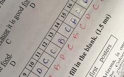 Thí sinh khóc thét với kết quả thi trắc nghiệm 20 câu chỉ đúng 1