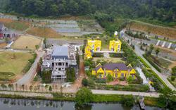 Báo cáo Thủ tướng kết quả thanh tra sử dụng đất rừng ở huyện Sóc Sơn trước ngày 1/2/2019