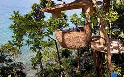 Đến Thái Lan tận hưởng cảm giác mới lạ độc đáo tại nhà hàng